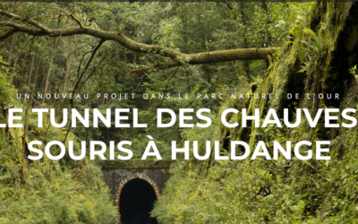 Finaliste du Prix Natura 2000 de l'UE – BAT TUNNEL